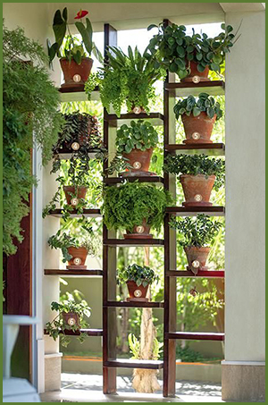 This Simple Wooden Unit With Offset Shelves Not Only Looks Great And Has Room For Lots Of Plants It Creates A Semi Barrier To The Space Behind It While